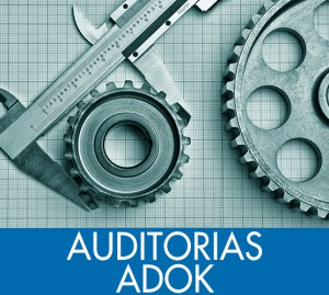 auditorias adok