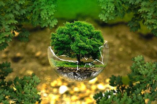 certificadora-medioambiente